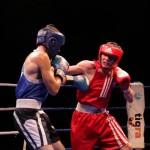 Матчевая встреча по боксу в Харькове