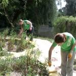 Участники всеукраинского проекта «Заповедник»  помогают Краснокутскому дендропарку